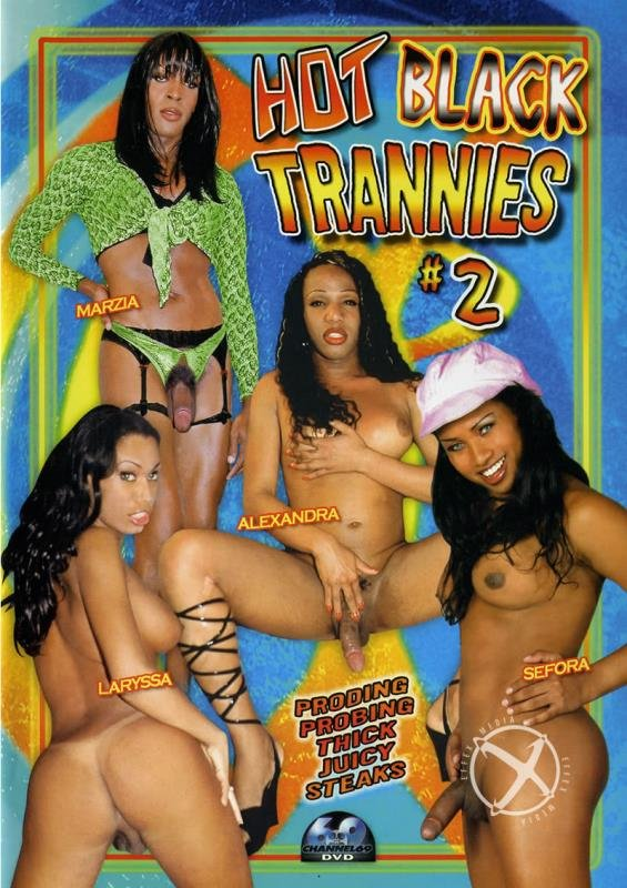 [Transsexual / Anal] - Marzia, Sefora, Alexandra, Cyntia, Dunia Montenegro - Hot Black Trannies 2 (2006 / Channel 69 / WEBRip/SD)