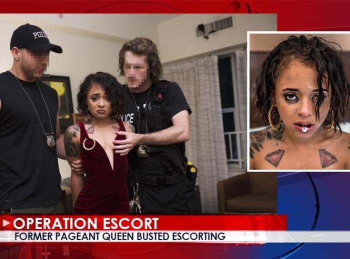 Holly Hendrix - Former Pageant Queen Busted Escorting (FullHD/2.06 GB)