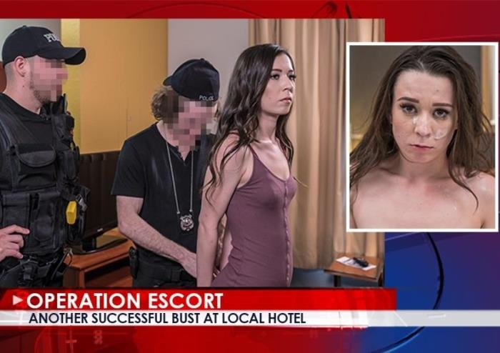 Ariel Grace - Another Successful Bust At Local Hotel (FullHD/2.04 GB)
