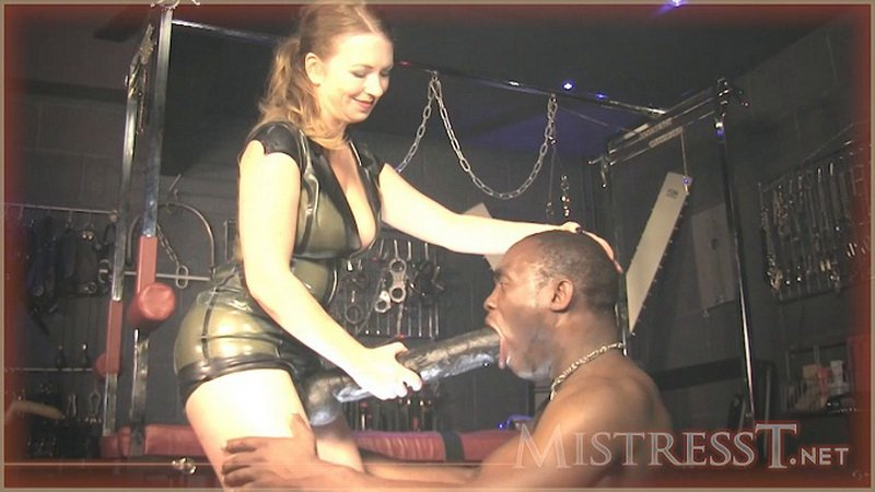 Mistress T - POV Fuck For Cuckold (HD/428 MB) » Download (VipFile ...